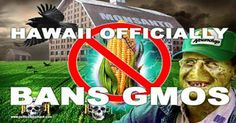 GMOs Banned in Hawaii