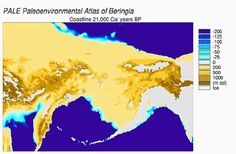 A view of the Bering Strait land bridge, as it would have appeared about 21,000 years ago. Humans probably migrated across the temporary link to the New World, recent genetic evidence suggests.