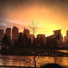 Bellevue, Washington - sunsets here remind me of why I love living in this state!