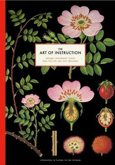 The Art of Instruction: Vintage Educational Charts from the 19th and 20th Centuries, Katrien Van der Schueren