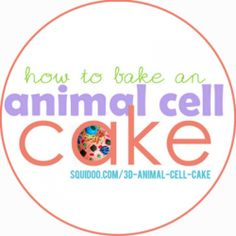 Step-by-step instructions for baking a delicious, scientifically accurate animal cell cake. Science Cells, Science Fair, Science Lessons, Teaching Science, Science Projects, School Projects, School Ideas, Art Projects, Edible Animal Cell
