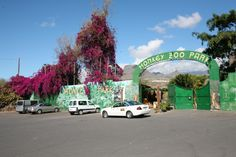 Monkey Park Tenerife Monkey Park, Holiday Fun, Places Ive Been, Tenerife