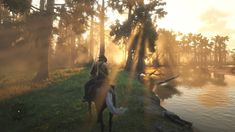 Red Dead Redemption II (Review)
