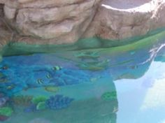 1000 images about pool on pinterest epoxy pool paint and swimming pools for Epoxy coating for swimming pools