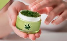 Todos sabemos que el cannabis se puede fumar, se puede vaporizar e incluso ingerir a través de dulces cannabicos elaborados con mantequilla de marihuana, aceite de marihuana o directamente cogollos. Pero para quienes presentan algún …