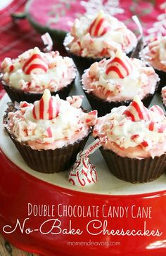 Double Chocolate Peppermint No-Bake Mini Cheesecakes! A unique and delicious holiday dessert idea!