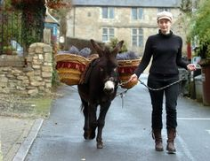 <3 these little donkeys deliver groceries on Saturdays to residents whose homes are not easily accessed by cars in Cotswold village