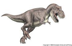 13 Dino Pics Ideas Jurassic Park World Jurassic Park Prehistoric Creatures