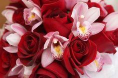 Soñadoras y románticas, las ARIES en el amor pueden desbordarse en sentimientos apasionados. Desean que su pareja les preste atención exclusiva; suelen ser celosas y posesivas. Nrosaso toleran la infidelidad, ni perdonan fácilmente. El ramo adecuado para una aries debe tener un tamaño considerable y transmitir esa pasión que llevan dentro: las rosas y orquídeas en tonos muy fuertes son ideales.