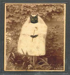 Cat wedding gown...my black Shadow would *never* sit still for this!