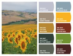 Nice sunflowers. Cross pinned to My Color Inspirations board.