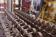 Wolves Den Weightlifting is one of the greatest Gym and also provide Services of Powerlifting in chilliwack proper village west. Weightlifting, Powerlifting, Wolves, Den, Gym Equipment, Weight Lifting, Weight Lifting, Wolf, Weight Training