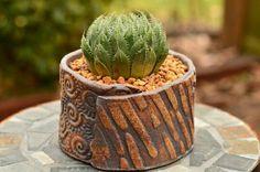 Image result for handbuilt planters