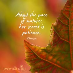 Honor slow time. For the app of uplifting wallpapers ~ www.everydayspirit.net xo #patience #nature