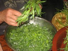 Seaweed Salad, Pesto, Green Beans, Spinach, Food And Drink, Vegetables, Drinks, Ethnic Recipes, Drinking