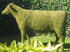 I want to make a topiary frame