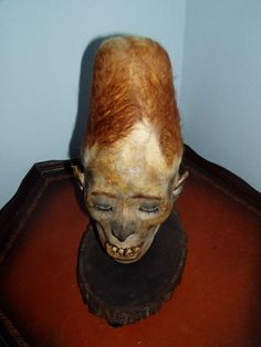 Elongated Peruvian Mummy Head ------ Very interesting! It has blonde hair! Ancient Aliens, Aliens And Ufos, Ancient History, Ancient Mysteries, Ancient Artifacts, La Danse Macabre, Nephilim Giants, Inca, Cryptozoology