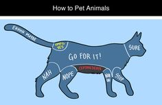 How to Pet Animals by Adam Ellis