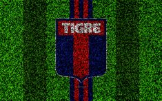Download wallpapers CA Tigre, 4k, football lawn, logo, Argentinian football club, grass texture, blue red lines, Superliga, Buenos Aires, Argentina, football, Argentine Primera Division, Superleague, Tigre FC
