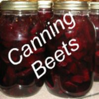 CANNED BEETS RECIPE. For plain beets, not pickled with spices