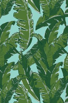 Leaves Bananique in Aqua Sea by elliottdesignfactory - Hand illustrated palm leaves on a turquoise background on fabric, wallpaper, and gift wrap.  Tropical banana leaf illustration with a modern twist.