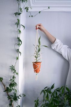 Hanging planter / Hanging plant holder / Cotton cord + vintage thread plant hanger / Pastel green,