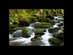 Photo Nature, flowing water Waterfall, Photography, Outdoor, Outdoors, Photograph, Fotografie, Photo Shoot, Fotografia, Outdoor Living