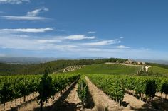 Where to Stay in Tuscany? Best Bases for your Stay in Tuscany