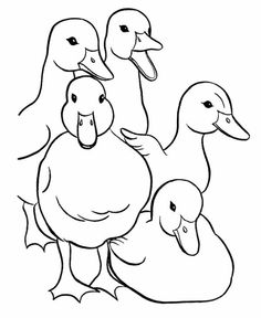 duckling coloring pages.html