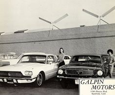 Used Car Lots, Used Cars, Ford Mustang 1964, Ford Mustangs, Mustang Dealership, Ford America, Vintage Mustang, Mustang Convertible, Ford Classic Cars