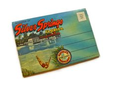 Vintage Florida Postcard Souvenir Photo Postcard SIlver Springs. $8.80, via Etsy.