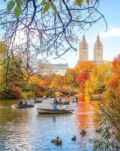 Autumn in Central Park ? by Kelly Kopp Autumn in Central Park by Kelly Kopp A New York Minute, Central Park Nyc, Autumn In New York, Empire State Of Mind, City Aesthetic, Autumn Scenery, Dream City, New York Travel, New York City