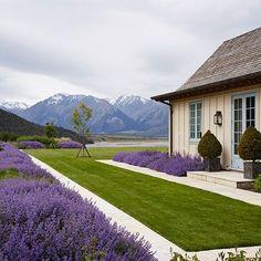Beautiful Backyard landscaping design. Very neat.
