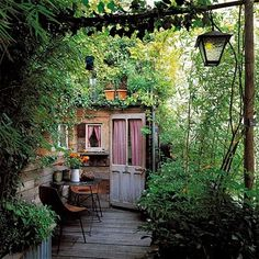 garden workshop, overgrown and lovely