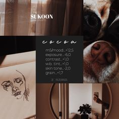 camera settings,photo editing,camera effects,photo filters,camera display Photography Filters, Photography Editing, Best Vsco Filters, Free Vsco Filters, Free Photo Filters, Fotografia Vsco, Vsco Hacks, Vsco Effects, Vsco Themes