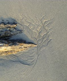 Arnicas. Water patterns in sand