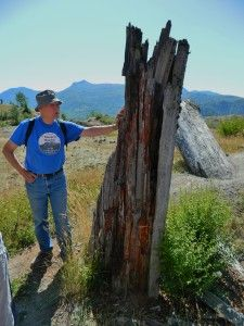 Mt. St. Helens' Hummocks Trail Adventures Part 4 | The Nature Tour