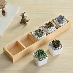 Cheap meat pots, Buy Quality decorative pots directly from China wooden pot Suppliers: The new five grid storage Creative grocery solid wood logs more meat pots home decoration Succulent Pots, Planting Succulents, Potted Plants, Indoor Plants, Wooden Planters, Wooden Garden, Planter Boxes, House Plants Decor, Plant Decor