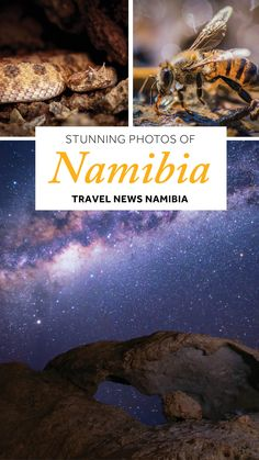 Photographer Feature: Laurent Hesemans - Travel News Namibia Film School, Production Company, Travel News, Visual Effects, Filmmaking, South Africa, Exploring, Liberty, Childhood