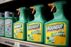 #France to ban some glyphosate weedkillers due to health concerns - Reuters: Reuters France to ban some glyphosate weedkillers due to…