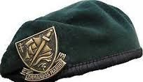 Beret vert et badge commando marine Military Beret, Swords And Daggers, Special Forces, Marine Corps, Badges, Wwii, Police, Baseball Hats, Pictures