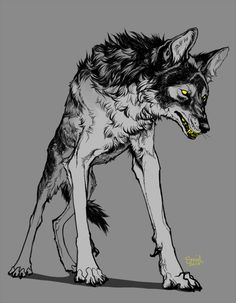 Creature Drawings, Animal Drawings, Art Drawings, Wolf Drawings, Werewolf Art, Werewolf Stories, Fantasy Wolf, Fantasy Creatures, Mythical Creatures