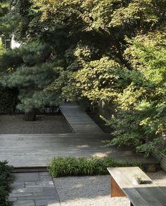 Privacy Landscaping, Garden Landscaping, Transplanting Plants, Landscape Design, Garden Design, Low Light Plants, Public Garden, White Gardens, Winter Trees