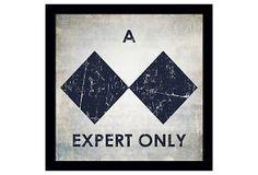 Expert Only on OneKingsLane.com