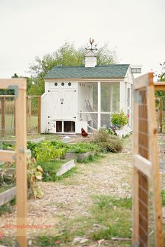 chicken coop and garden