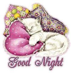A cute good night ecard. Free online Good Night Cat ecards on Everyday Cards Good Night Cat, Good Night My Friend, Cute Good Night, Good Night Everyone, Night Love, Good Night Sweet Dreams, Day For Night, Good Night Greetings, Good Night Messages
