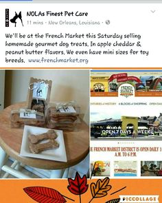 Will be at the French Market Saturday, Oct 8th selling homemade gourmet apple cheddar & peanut butter dog treats. Will also accept reservations for holiday pet sitting. www.nolasfinestpets.com  www.frenchmarket.org Gourmet Apples, Peanut Butter Dog Treats, Gourmet Dog Treats, Pet Sitting, Pet Home, Cheddar, New Orleans, Homemade, French