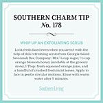Southern Charm Tip No 178