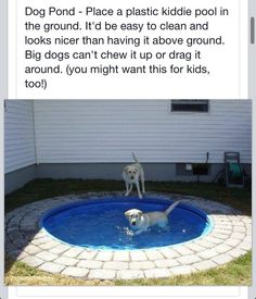 Kiddie-Doggy pool. I'm planning on doing two of these! One swimming pool ans one as a sandbox!