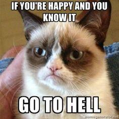 Grumpy cat speaks from the heart.